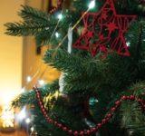 【朗報】韓国がついにクリスマスツリーの起源を主張
